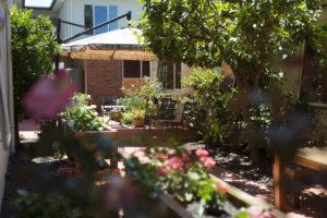 Internal courtyard scene